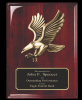 Rosewood Piano Finish plaque with Eagle Casting Eagle Plaques