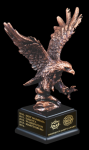 Eagle Landing Patriotic Awards