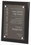Black Piano Finish Plaque Square Rectangle Awards