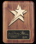 Rounded Edge Solid Walnut w/ star casting Wall Plaque Awards